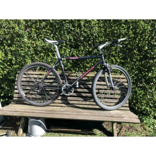 Giant Carbon mountainbike 18 inch frame